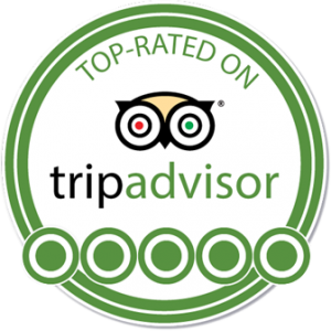 Relax Day Tours is top rated on TripAdvisor
